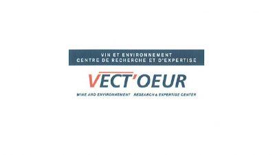 vect-oeur